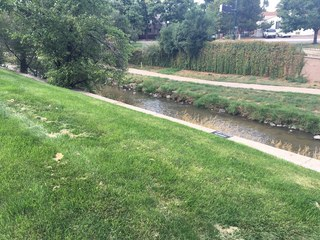 DPD issues 15 citations for drug use in parks