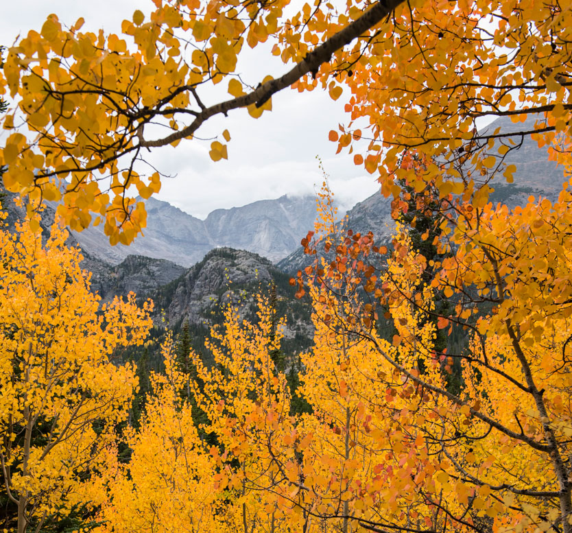 5 great places to see the fall colors in colorado right now