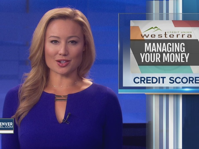 Credit Scores and Careers