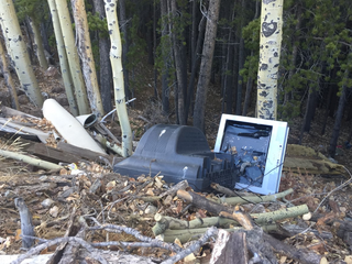 Couches, TVs, garbage dumped in Evergreen forest