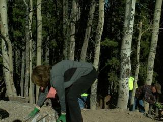 Volunteers clean up illegal dumps near Evergreen