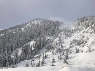 CO ski resorts eye future, as off year nears end