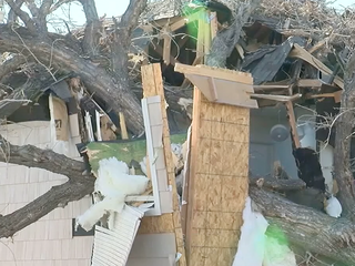 Tree crashes through home, inches from family
