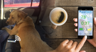 PuppComm helps monitor your dog in the car