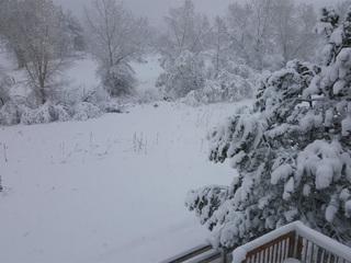 How much snow has fallen across Colorado?