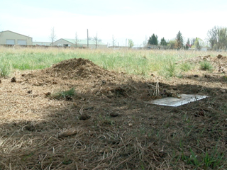 Green burials are a growing trend in Colorado