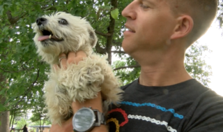 Family reunion for wrongfully claimed lost dog