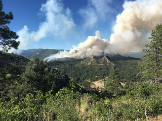 Gov. declares emergency for Lightner Creek fire
