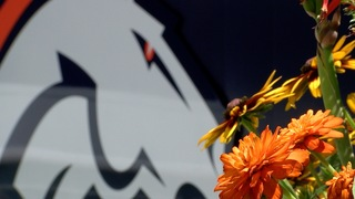 Broncos Training Camp opens gates to fans Thurs.