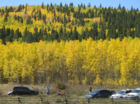 5 GREAT fall color hikes near Denver