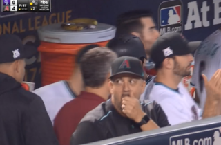 MLB fines D-backs coach spotted with Apple Watch
