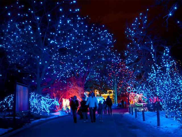 Tickets for Denver Zoo's 'Zoo Lights' now available for purchase ...