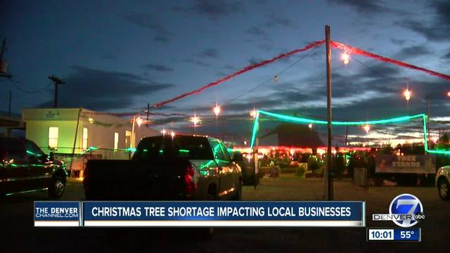 Christmas tree shortage has family-owned lots worried about future