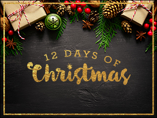 Enter 12 days of Christmas contests here!