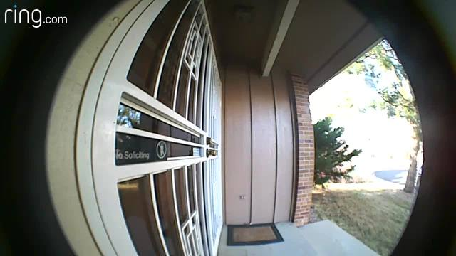 The Countdown To Christmas Is On And The Last Thing Anyone Wants Is Some Grinch  Stealing Holiday Packages Off The Front Porch.