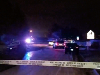 Woman shot & killed in Denver; suspect at large