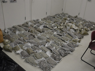 Springs PD find pot possibly linked to cartel