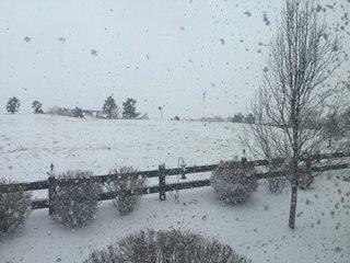 PHOTOS: Biggest snowstorm thus far arrives to CO