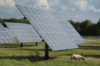 Trump hits solar panels with tariffs