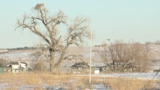 Broomfield approves development near eagle nest