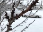 Colorado needs twice the snow to hit average