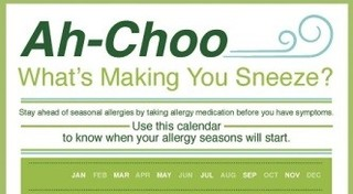 How to Stay Ahead of Allergies