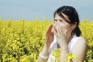 How Did I Develop Allergies?
