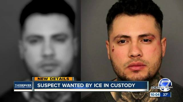Undocumented hit-and-run suspect wanted by ICE now in federal custody