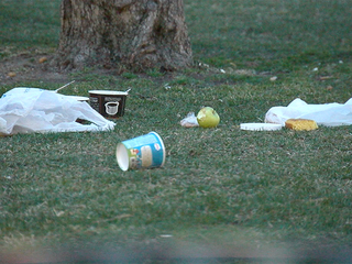Some say litter at Civic Center Park a problem