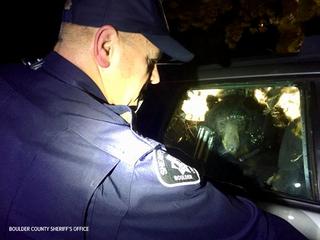Bear gets locked inside Boulder car