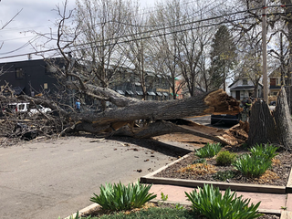 Damaging winds wreak havoc in Colorado