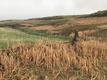 Company pulls Rocky Flats drilling application