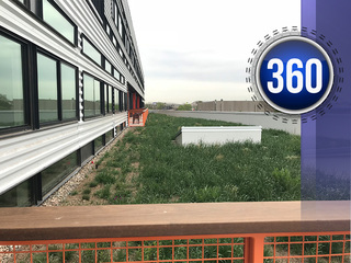 What is Denver's green roof future?