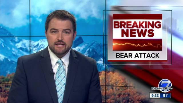 5-year-old attacked by bear in Grand Junction