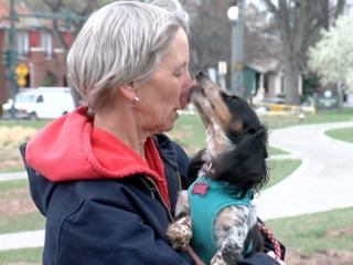 7Everyday Hero helps rescue Dachshunds