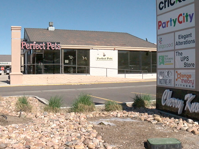 Centennial Pet Shop Accused Of Selling Sick Dogs To Customers