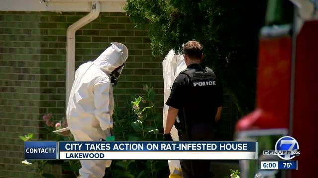 Code enforcement officers find evidence of -extensive rat infestation-…