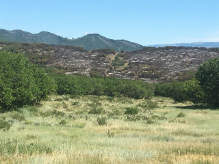 Fire burning near Glenwood Springs 60% contained
