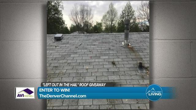 AVI Roofing