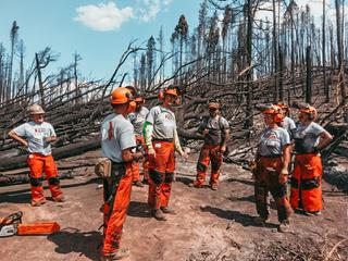 Veteran group volunteering at Spring Fire