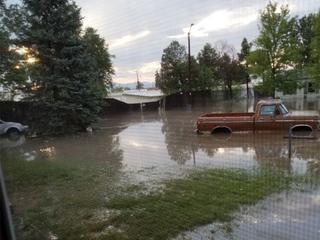 People told not to buy flood insurance struggle