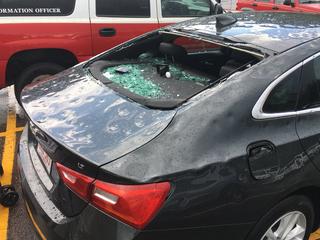 14 people injured, 2 animals killed in hailstorm