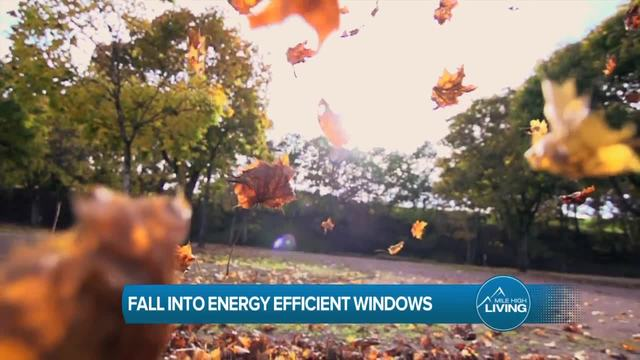 Fall Into Energy Efficient Windows with Lifetime Windows and Siding