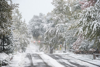 PHOTOS: The Front Range gets a blanket of snow