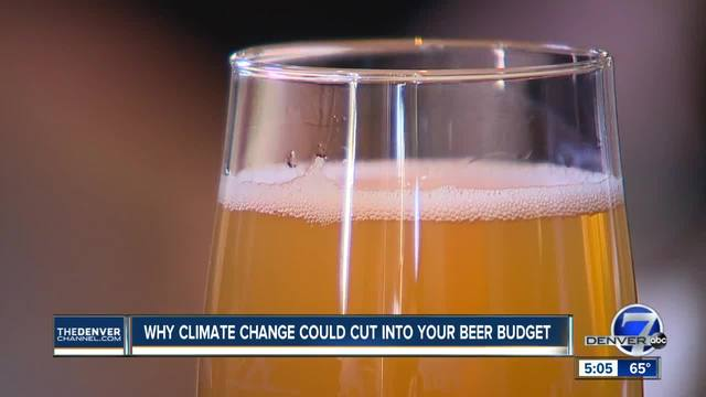 If climate change cuts into barley harvests- expect to pay double for your beer