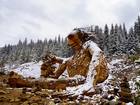 Wooden troll saved after talks, artist says